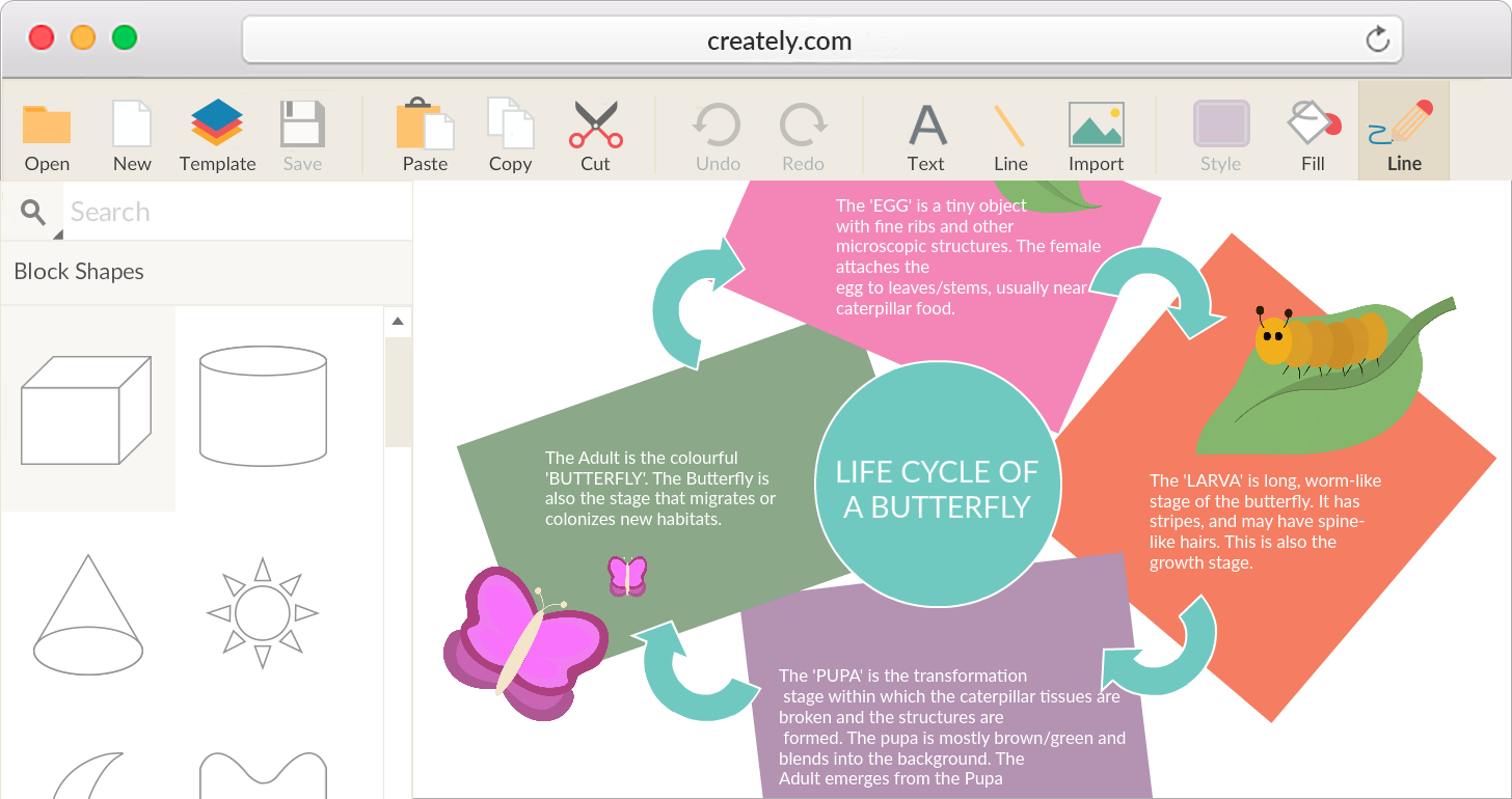 Graphic Organizer Software To create KWL charts, storyboards and other graphic organizers