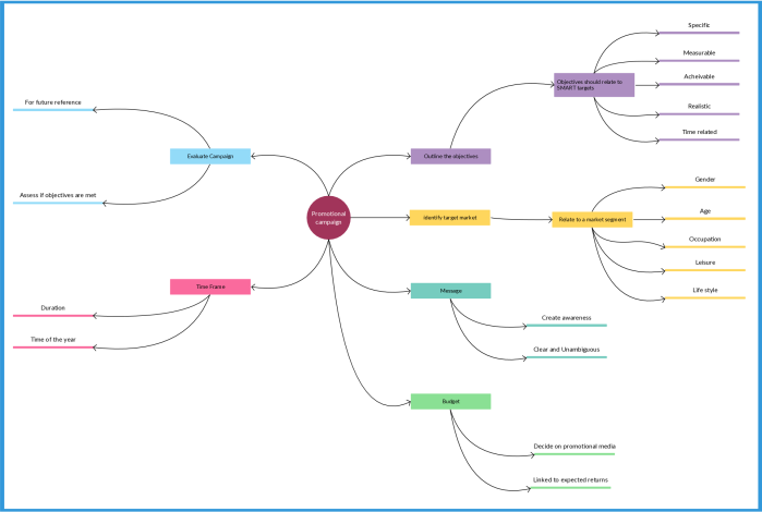 Mind map showing the important elements of a promotional campaign
