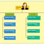 advantages and disadvantages of organizational charts   creately blogbasic org chart