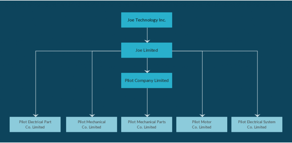 Org Chart Template for Holding Company Structure