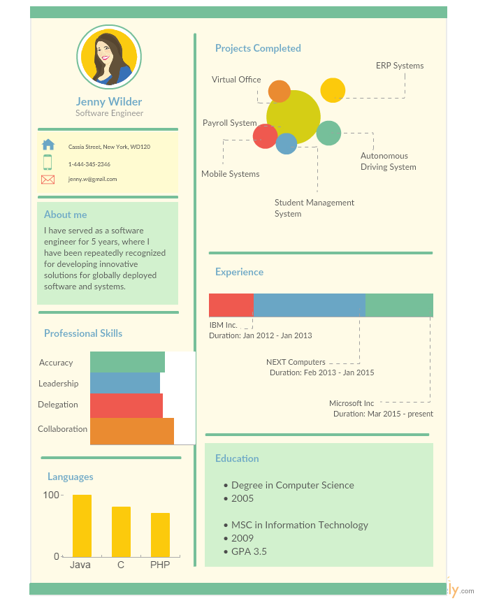 Infographic Resume Templates For Software Engineers