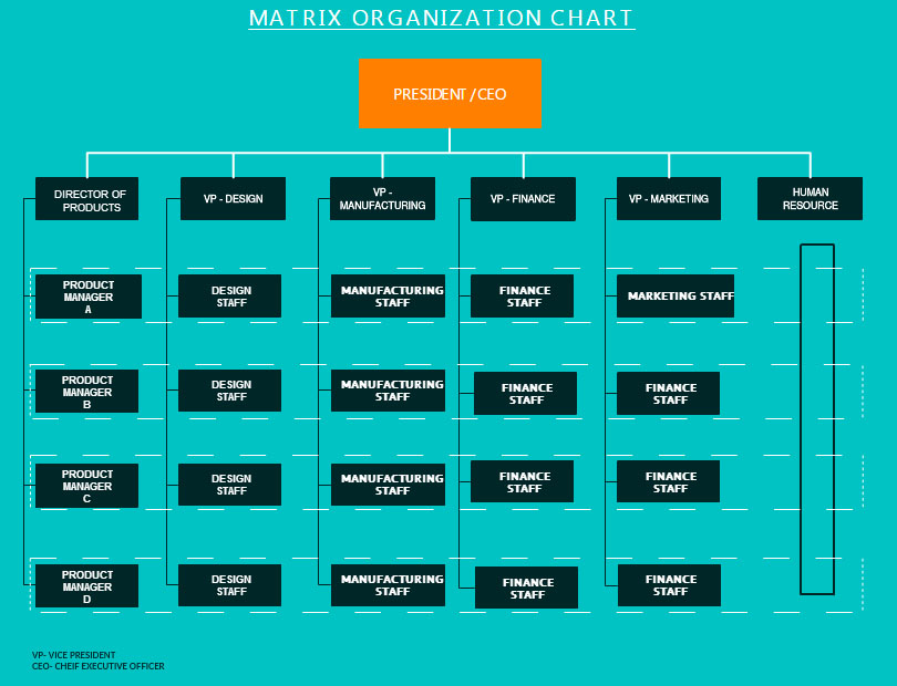 org chart software to create organization charts online